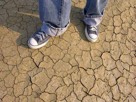 rabbet: Walking In Desert Stock Photo