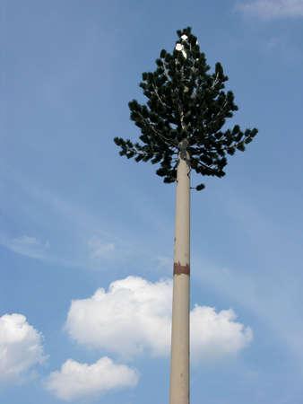 taller: Artificial Tree Stock Photo