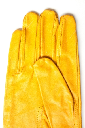 whitw: leather gloves on whitw background