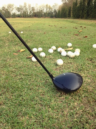 drivers: The drivers and golf balls on grass