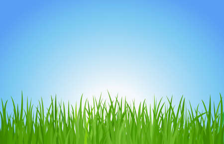 grass and sky Stock Vector - 16246261