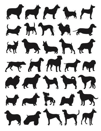 beagle puppy: Muchas especies de perros en silhouttes Vectores