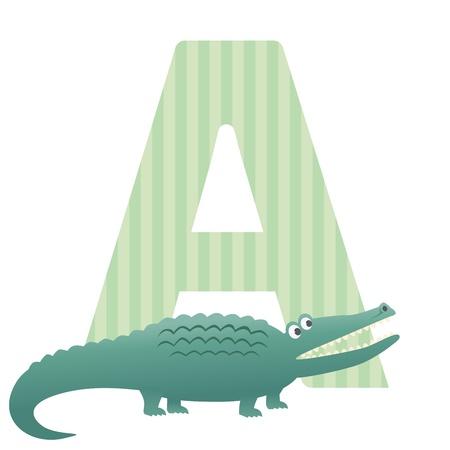 Letter A is for Alligator vector illustration