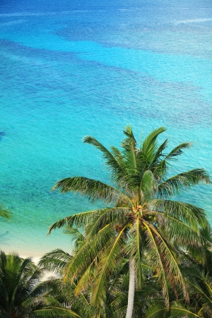 Tropical scenery of palm tree in the beach Stock Photo