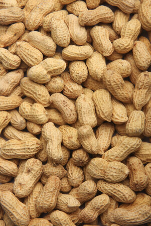 Peanut background texture