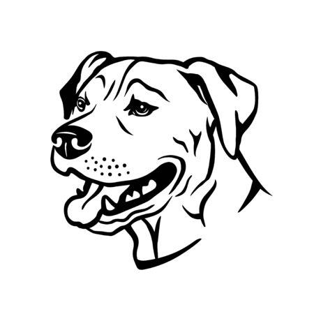 Portrait vector illustration of american pitbull terrier dog
