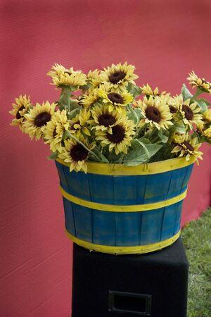 Basket of Sun Flowers Stock Photo - 2614425
