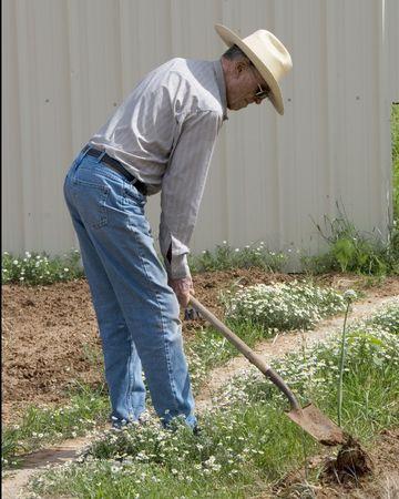 Eighty-Nine  year old shovels garden Stock Photo