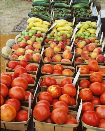 Tomatoes and Other Vegetables Stock Photo