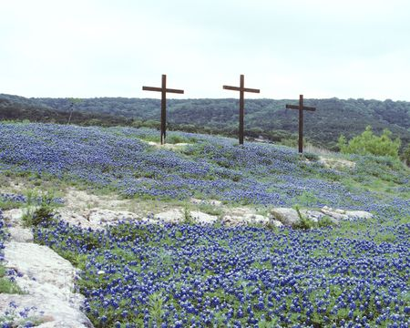 Three Crosses in the Blue Bonnets Stock Photo
