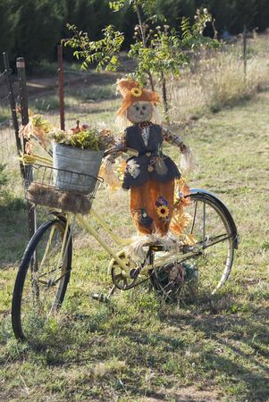 Strawman, Flowers, and Bicycle