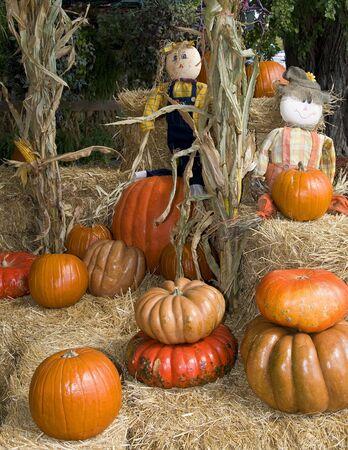 Pumpkins and strawmen Stock Photo