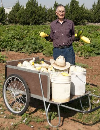 Ninety-One year old farmer holding squash while standing by a cart full of squash with the garden in the background
