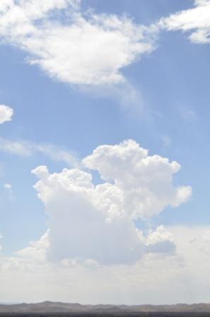 Vertical Bright Blue Sky