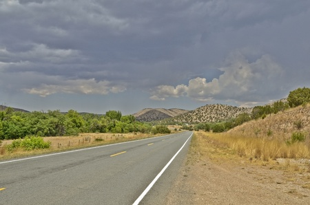 Long highway in New Mexico with trees and mountains