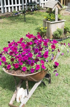 Flowers in wishing well and in wheelbarrow