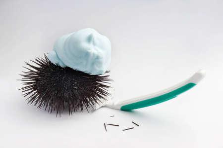 pilluelo: erizo con herramienta de afeitado