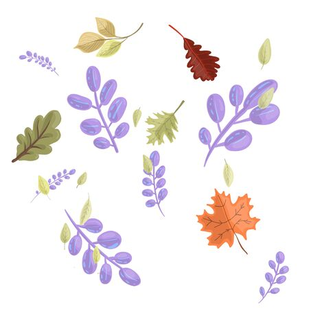 Set autumn colorful leaves drawn in cartoon style isolated on white background. Ilustrace