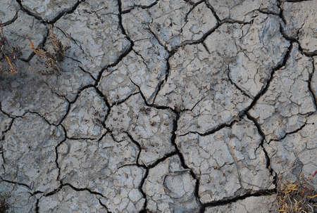 aridness: dry ground
