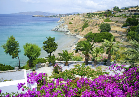 andros: landscape of Andros island Greece