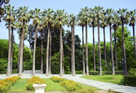national garden in Athens Greece