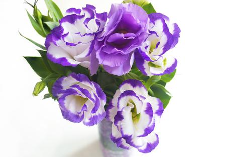 vibrance: bouquet of purple flowers