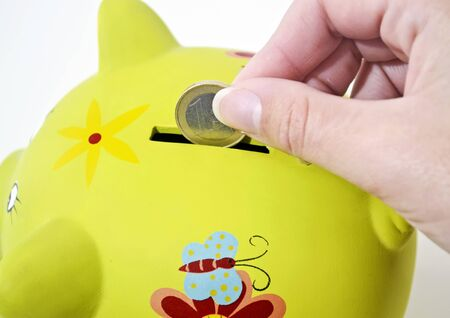 money box: green pig money box, saving money concept
