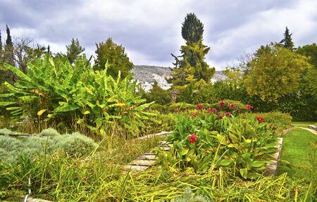 botanic: Diomides botanical garden of Greece - greek botanic garden