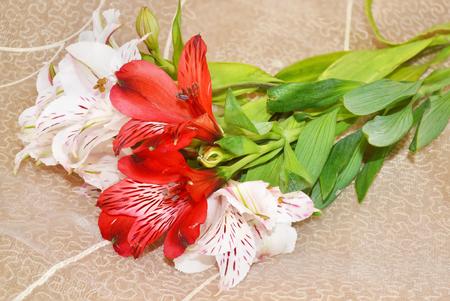alstromeria: bouquet of Alstromerias flowers on brown background