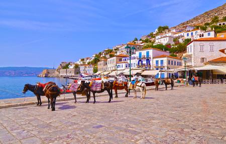 ânes les moyens de transport à l'île Hydra Golfe Saronique Grèce