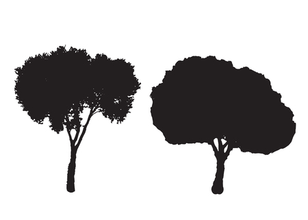 Two silhouette trees vector set white background.