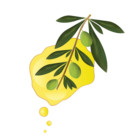 Olive oil vector illustration - greek olive oil advertisement Illustration