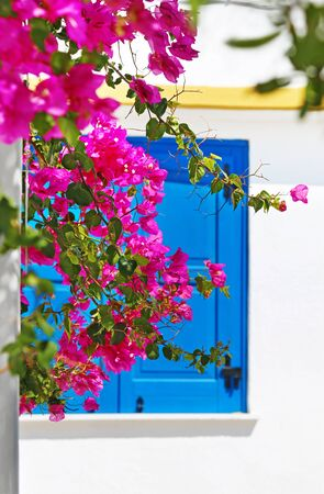 traditional blue window behind the bougainvilleas at Ano Koufonisi island Greece Stock Photo
