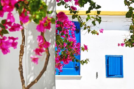 traditional scene of houses at Koufonisia islands Cyclades Greece - pink bougainvillea flowers and traditional houses with blue windows