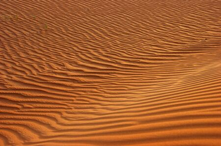 Desert Stock Photo - 13717795