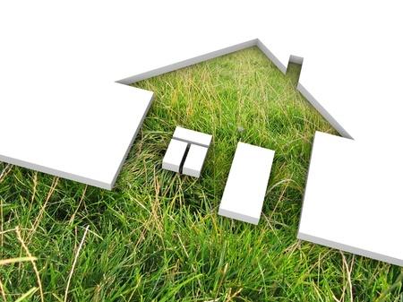 grass  plan: eco house metaphor