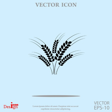 wheat ears vector icon Illustration