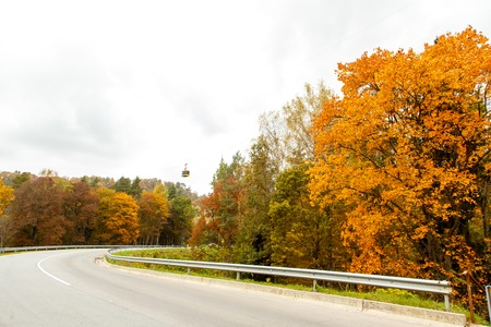 curving: A colourful curving autumn road in overcast day