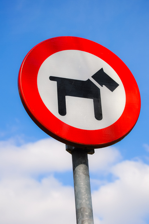disallow: Sign that tells that dogs are forbidden