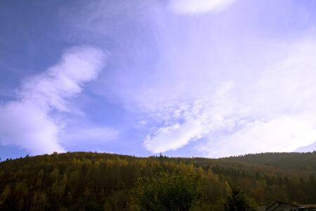 blue sky over the forest Stock Photo