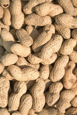 peanuts reflecting in sunlight Stock Photo