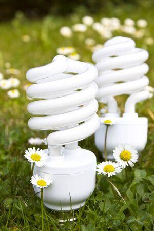 energy saving bulbs on daisy field 2 Stock Photo