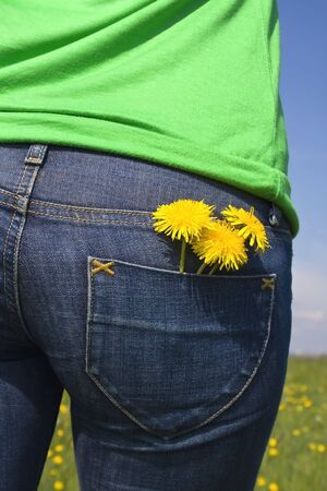 dandelions in back pocket photo