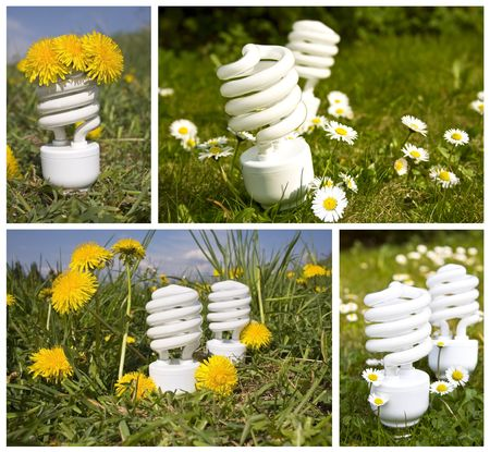 energy saving bulbs on field, collage photo