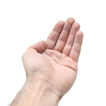 hand on white background 6