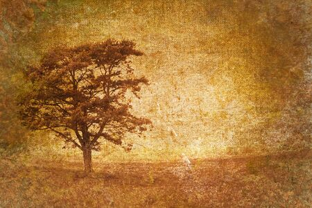 cooper: tree motive on old vintage background