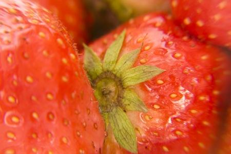 sweet juicy strawberry Stock Photo - 8529682