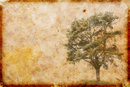 vintage style paper background Stock Photo - 8967733