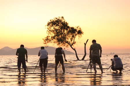 group of photographer taking sillhoutte photo of tree in reservoir