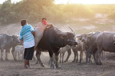 father takecare his son crimb up buffalo